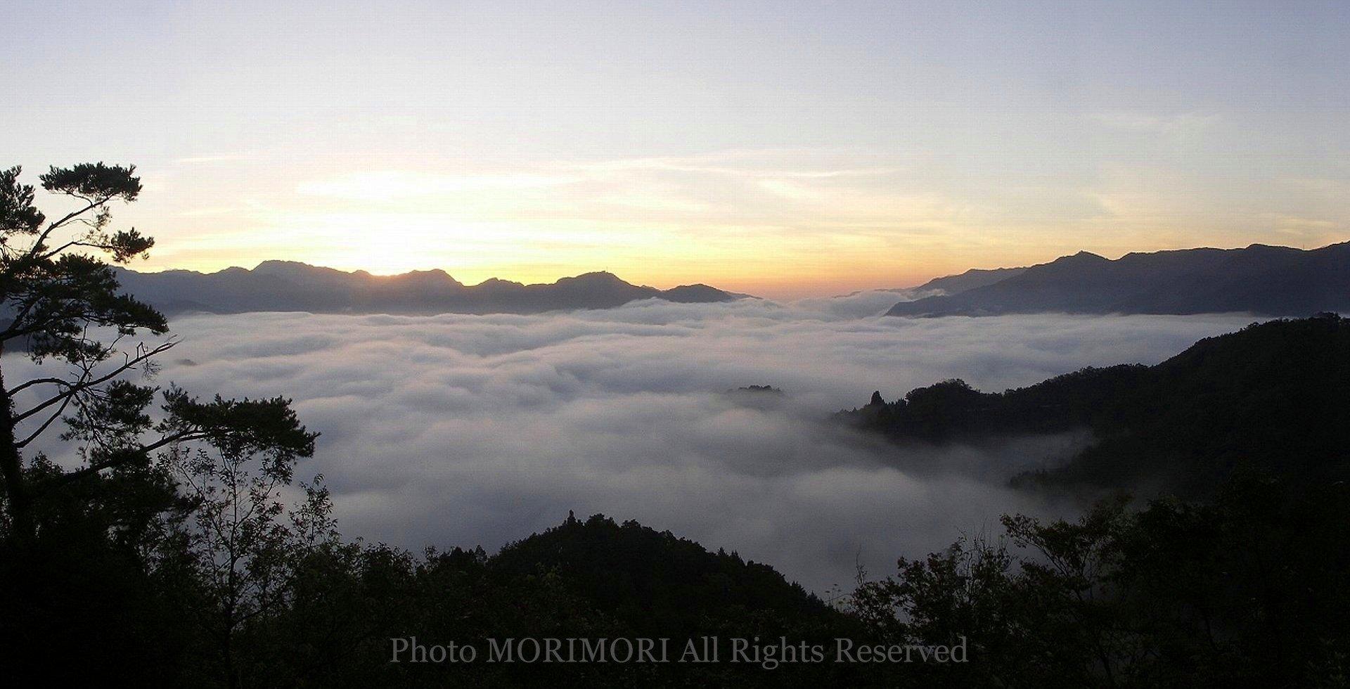 「宮崎県 国見ヶ丘 雲海」的圖片搜尋結果
