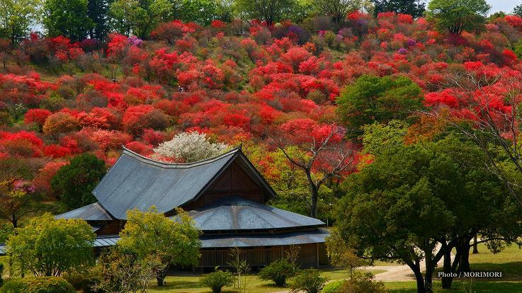 ■ 高取山公園 宮崎県西都市